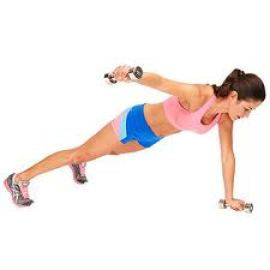 Image result for Plank with Lateral Arm Raise